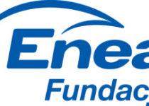 Więcej o: Współpracujemy z Fundacją ENEA